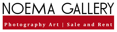 Noema Gallery